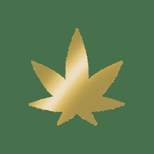 golden hemp leaf icon