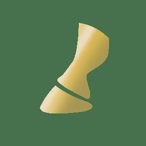 golden horse hoof icon