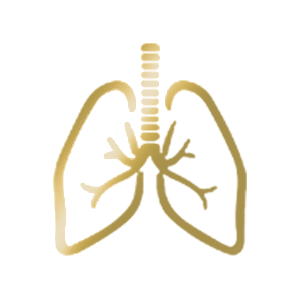 golden lung icon