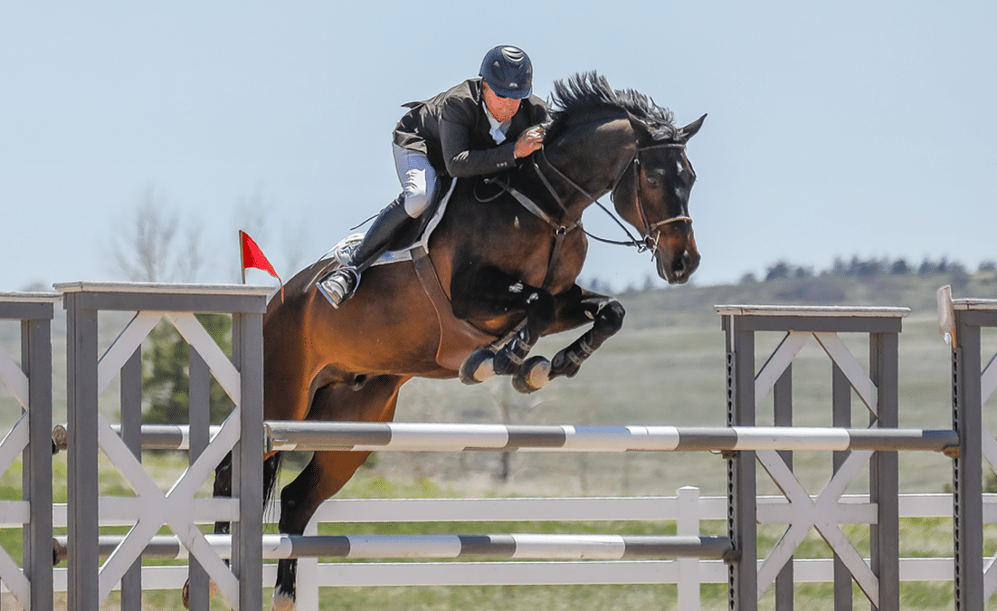 man on bay horse jumping large jump
